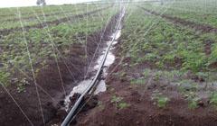 农用节水微喷带